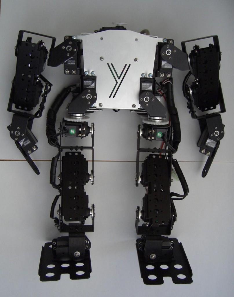YDNA2 front